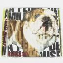 A Pedir de Milkhouse - Zenzano (2008)
